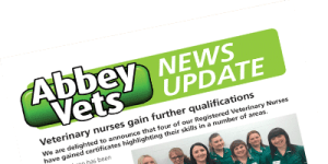 abbey-news-update