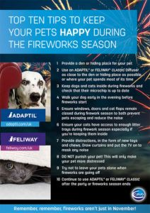 Fireworks-Top-Tips-(Aug-2016)